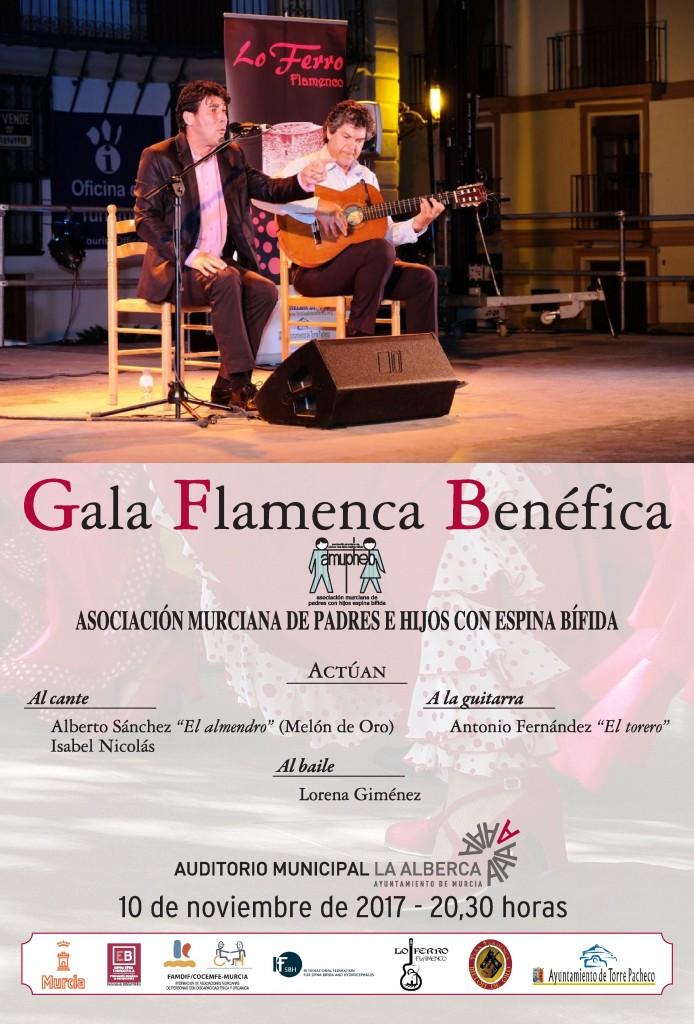 Gala_Flamenca_amupheb_